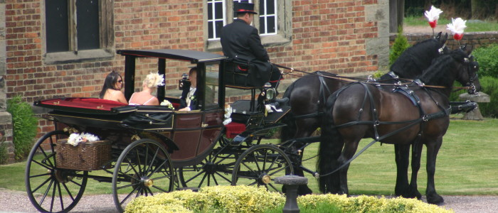 Haywood Park Farm horse and carriage