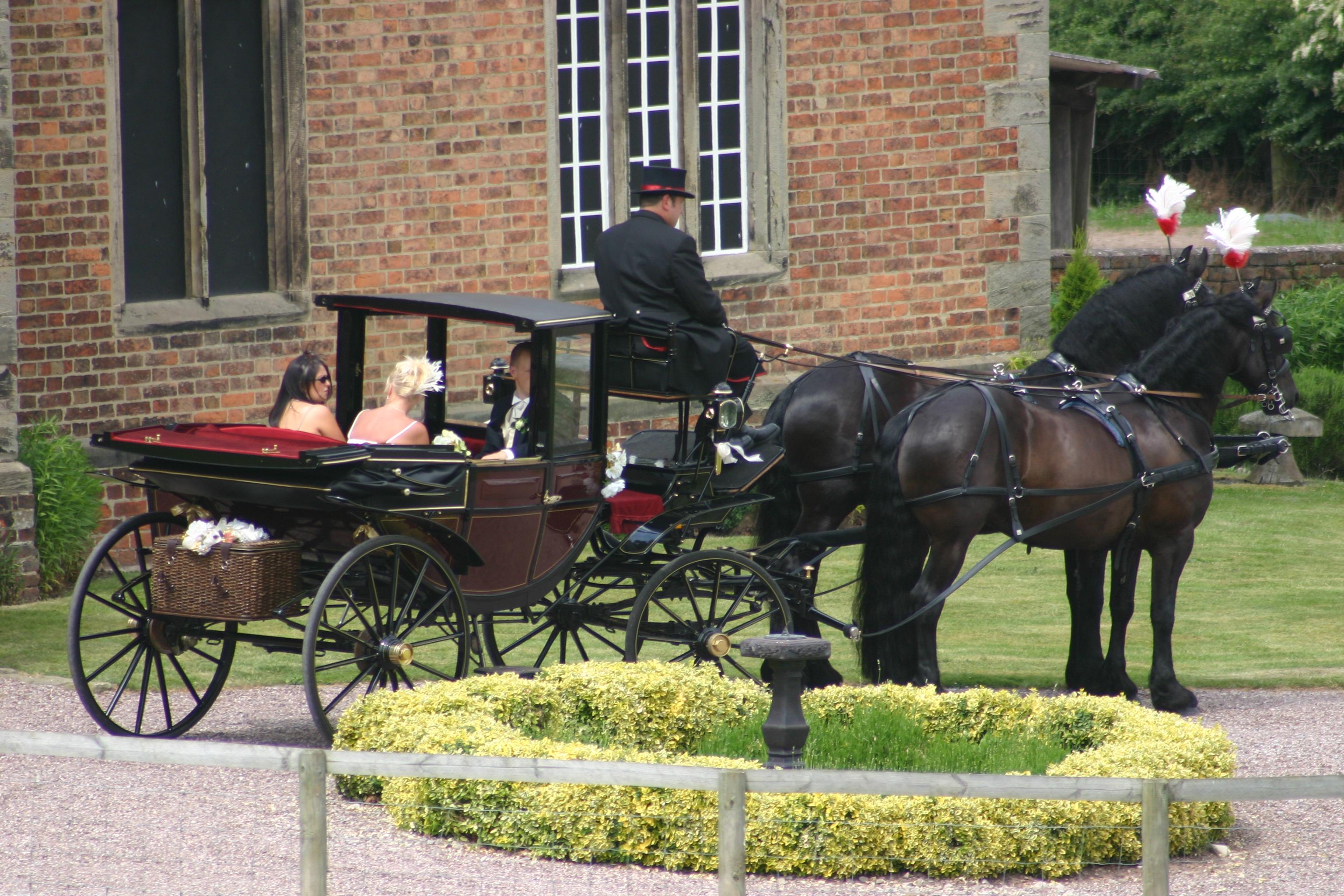 Haywood Park Farm horse and carriage
